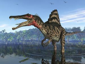 A Spinosaurus Searches for its Next Meal by Stocktrek Images