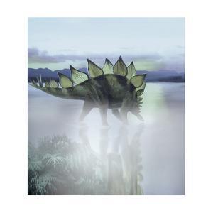 A Stegosaurus Dinosaur Grazing in a Prehistoric Lake by Stocktrek Images