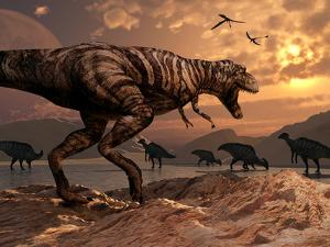A T-Rex Plans His Attack on a Herd of Parasaurolophus Dinosaurs by Stocktrek Images
