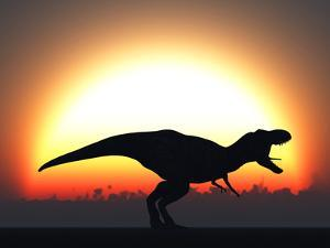 A T. Rex Silhouetted Against the Setting Sun at the End of a Prehistoric Day by Stocktrek Images