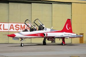 A Turkish Air Force F-5B-2000 Freedom Fighter in the Turkish Stars Aerobatic Team Colors by Stocktrek Images