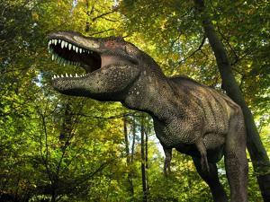A Tyrannosaurus Wanders a Cretaceous Forest by Stocktrek Images