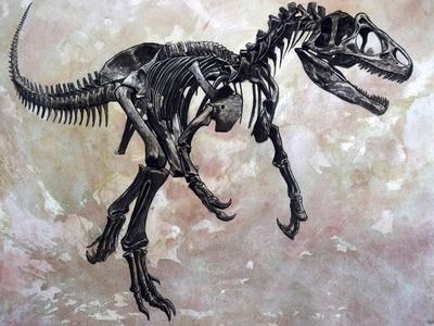 Allosaurus Dinosaur Skeleton