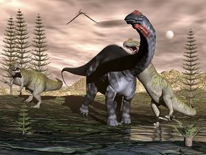 Allosaurus Dinosaurs Attacking an Apatosaurus by Stocktrek Images