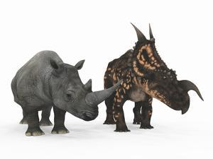 An Adult Einiosaurus Compared to a Modern Adult White Rhinoceros by Stocktrek Images