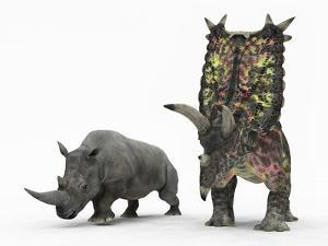 An Adult Pentaceratops Compared to a Modern Adult White Rhinoceros by Stocktrek Images