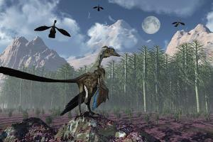 An Archaeopteryx Standing at the Edge of a Forest by Stocktrek Images
