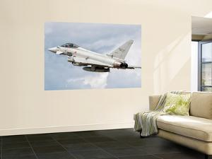 An Italian Air Force Eurofighter Typhoon by Stocktrek Images