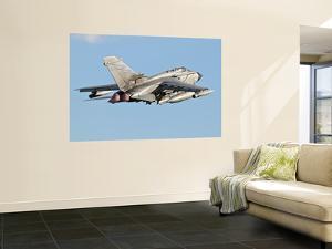 An Italian Air Force Panavia Tornado Ecr by Stocktrek Images