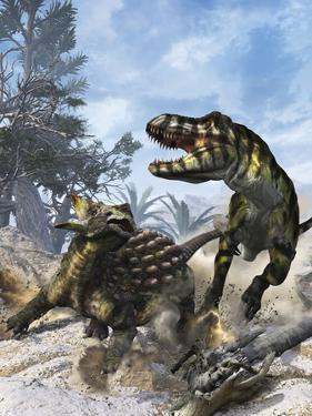 Ankylosaurus Hits Tyrannosaurus Rex with it's Clubbed Tail in Self-Defense by Stocktrek Images