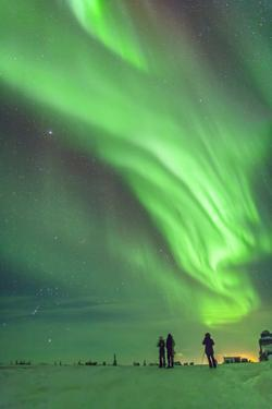 Aurora Borealis with Taurus and Orion over Churchill, Manitoba, Canada by Stocktrek Images