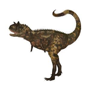 Carnotaurus Dinosaur by Stocktrek Images