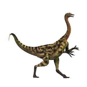 Deinocheirus Dinosaur by Stocktrek Images