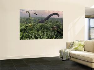Diplodocus Dinosaurs of the Sauropod Family by Stocktrek Images