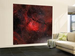 Emission Nebula NGC 6820 by Stocktrek Images