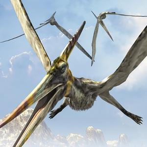 Flying Pterodactyls Searching for Food by Stocktrek Images