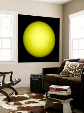 Full View of the Sun by Stocktrek Images