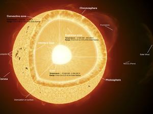 Illustration Showing the Various Parts That Make Up the Sun by Stocktrek Images