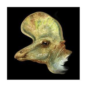 Lambeosaurus Portrait by Stocktrek Images