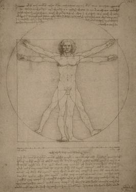 Leonardo Da Vinci's Vitruvian Man, Circa 1490 by Stocktrek Images