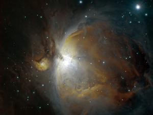 M42 Nebula in Orion by Stocktrek Images