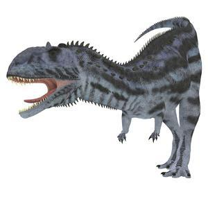 Majungasaurus Dinosaur, White Background by Stocktrek Images
