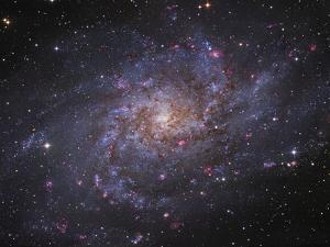 Messier 33, Spiral Galaxy in Triangulum by Stocktrek Images