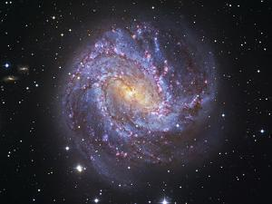 Messier 83, the Southern Pinwheel Galaxy by Stocktrek Images