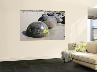 Moeraki Boulders, Koekohe Beach, New Zealand by Stocktrek Images