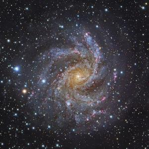 NGC 6946, a Spiral Galaxy in Cepheus by Stocktrek Images