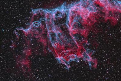 Ngc 6995, the Bat Nebula, Part of the Veil Nebula in Cygnus by Stocktrek Images