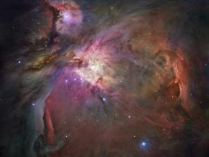 Orion Nebula by Stocktrek Images