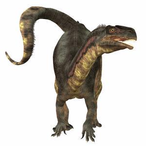 Plateosaurus Dinosaur, Front View by Stocktrek Images