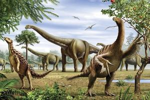 Scelidosaurus, Nothronychus and Argentinosaurus Dinosarus Grazing on Leaves by Stocktrek Images