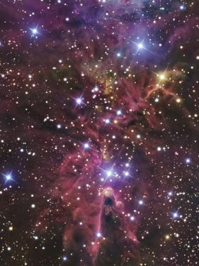 Stellar Nursery Located Towards the Constellation of Monoceros by Stocktrek Images