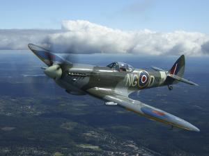 Supermarine Spitfire Mk.XVI Fighter Warbird of the Royal Air Force by Stocktrek Images