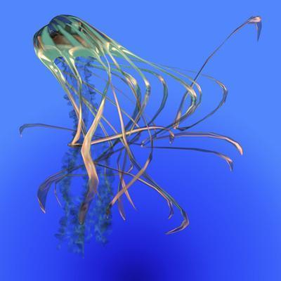 Teal Jellyfish Illustration by Stocktrek Images
