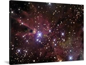 The Cone Nebula and Christmas Tree Cluster by Stocktrek Images
