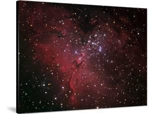 The Eagle Nebula by Stocktrek Images