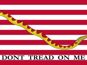 The First Navy Jack Authorized by the U.S. Navy by Stocktrek Images