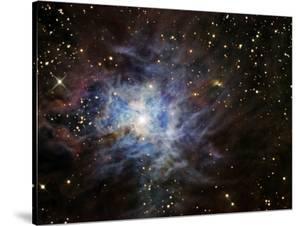The Iris Nebula by Stocktrek Images