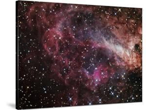 The Omega Nebula by Stocktrek Images