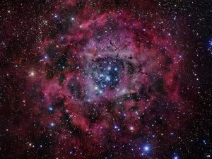 The Rosette Nebula by Stocktrek Images