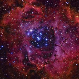 The Rosette Nebula by Stocktrek Images