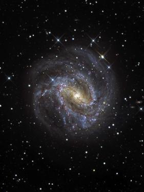 The Southern Pinwheel Galaxy by Stocktrek Images