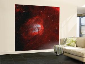 The Tadpole Nebula by Stocktrek Images