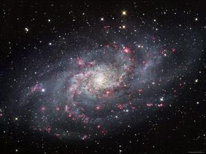 The Triangulum Galaxy by Stocktrek Images