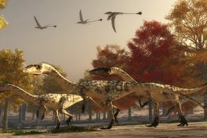Three Eudimorphodons Fly Above a Group of Coelophysis in an Autumn Forest by Stocktrek Images