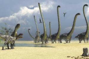 Two Allosaurus Predators Prepare for an Attack on a Herd of Omeisaurus by Stocktrek Images