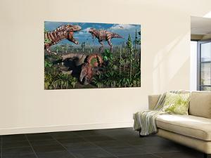 Two T. Rex Dinosaurs Confront Each Other over a Dead Triceratops by Stocktrek Images